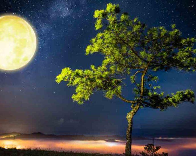 mơ thấy trăng tròn